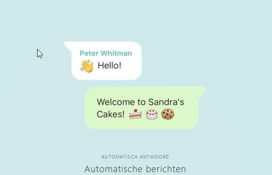 whatsapp pro bericht voorbeeld